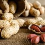 Genes play role in peanut allergy: study