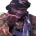 We Killed Shekau in Nigeria - Cameroon