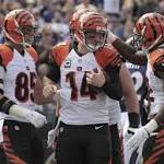 Bengals react to London trip