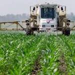 "Roundup herbicide labeled ""probably carcinogenic"""