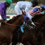 Bayern Wins the Breeders' Cup Classic