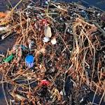 The Mystery Of The Missing Ocean Trash