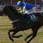 Racing: Scot triumphs at Grand National