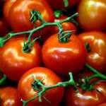Tomatoes can lower risk of prostate cancer