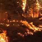 Yosemite Wildfire Caused by Illegal Fire Set by Hunter