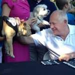 Quinn signs 'puppy lemon law' protecting consumers