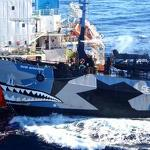 Sea Shepherd conservation group declared 'pirates' in US court ruling