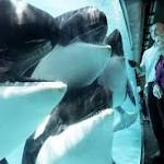 SeaWorld pushes back against new film, federal regulators