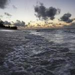 As Polar Melt Becomes Bigger Problem, Sea Levels Are Rising Higher than Ever