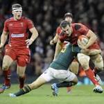 Six Nations 2014: Ireland v Wales, Where to Watch Live, Preview and Team News