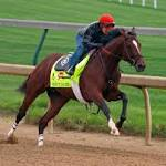 Wilkin: Tales from the Churchill Downs backstretch
