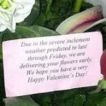 Storm's no bed of roses for florists before Valentine's