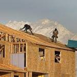 National Association of Home Builders Housing Index Plunges to 46