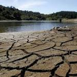 Drought-Hit New Zealand Reports Surprisingly Robust Growth