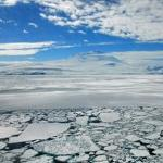 Arctic 'greening' seen through global warming