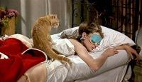 Ann Cat