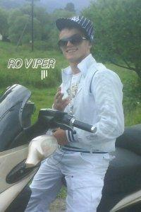 Роман Tiger