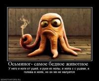 Олег Байбула