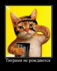 Ярослав Безверхий