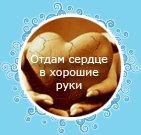 Дима Благородный