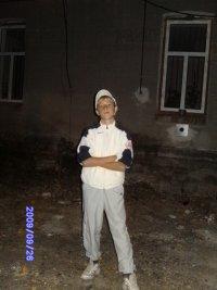 Dimon Cool