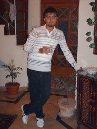 talha shahid