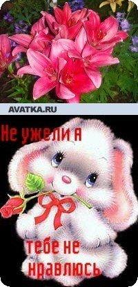 Кристина Вохмина