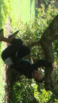 Dasha Grib