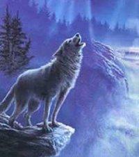 Игорь Wolf