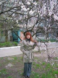 Лариса Белоконева