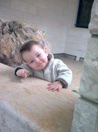 Shima Mostafa